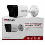 Camera IP Hikvision 2MP DS-2CD1021-I